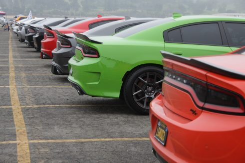 Dodge chargers lined up