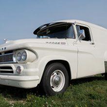 White older Dodge