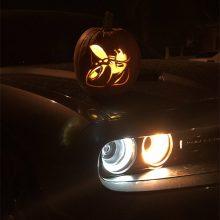 Angry Bee Pumpkin
