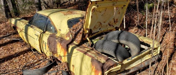 Old rusted yellow Dodge car abandoned in the woods