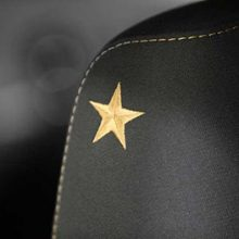bronze embroidered star on the driver seat