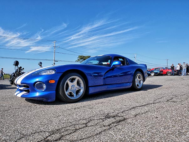 Side view of blue Viper