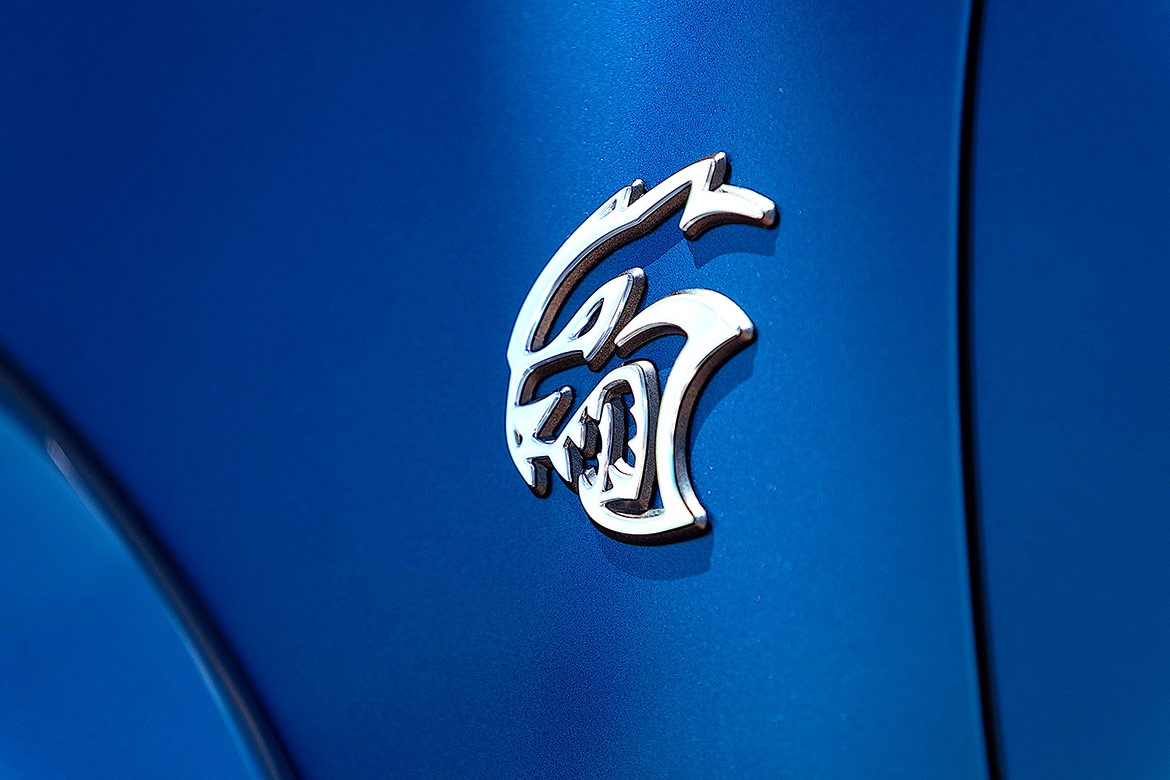 2020 Charger Hellcat Widebody decal