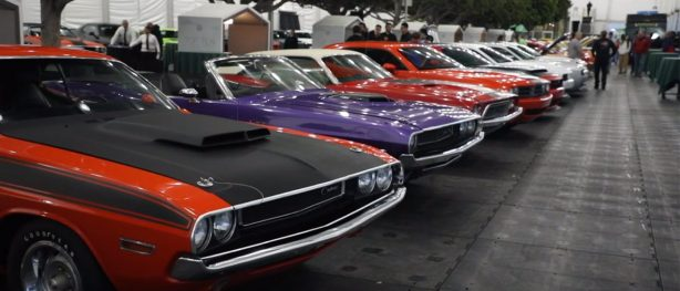 rows of dodge cars