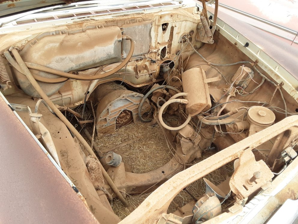 Under the hood of a 1959 Plymouth Fury