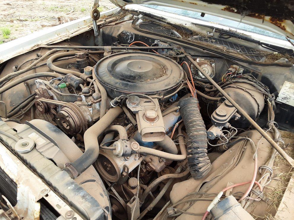 1981 Plymouth Gran Fury Police Pursuit engine